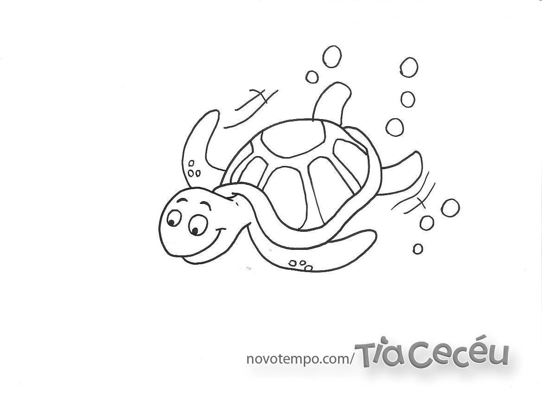 Imagem De Tartaruga Marinha Para Colorir