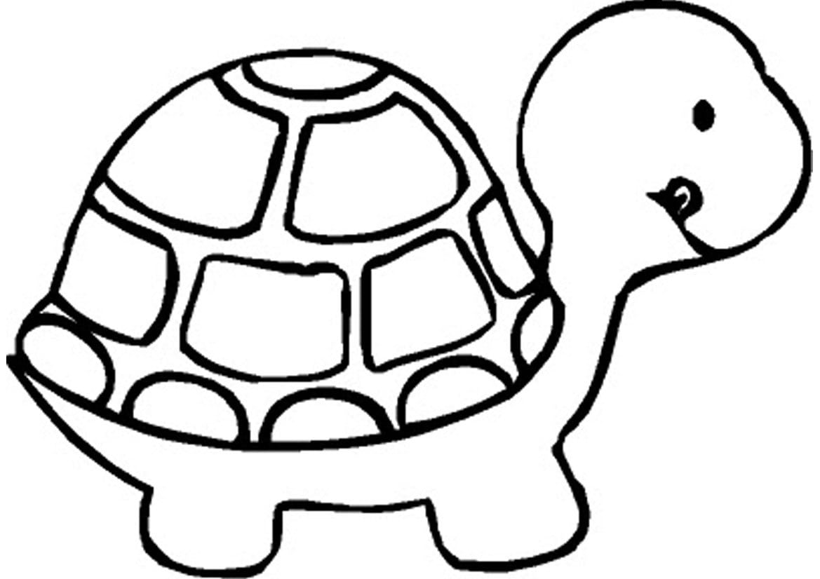 Desenhos Para Colorir De Tartarugas  Desenhos De Tartarugas Para