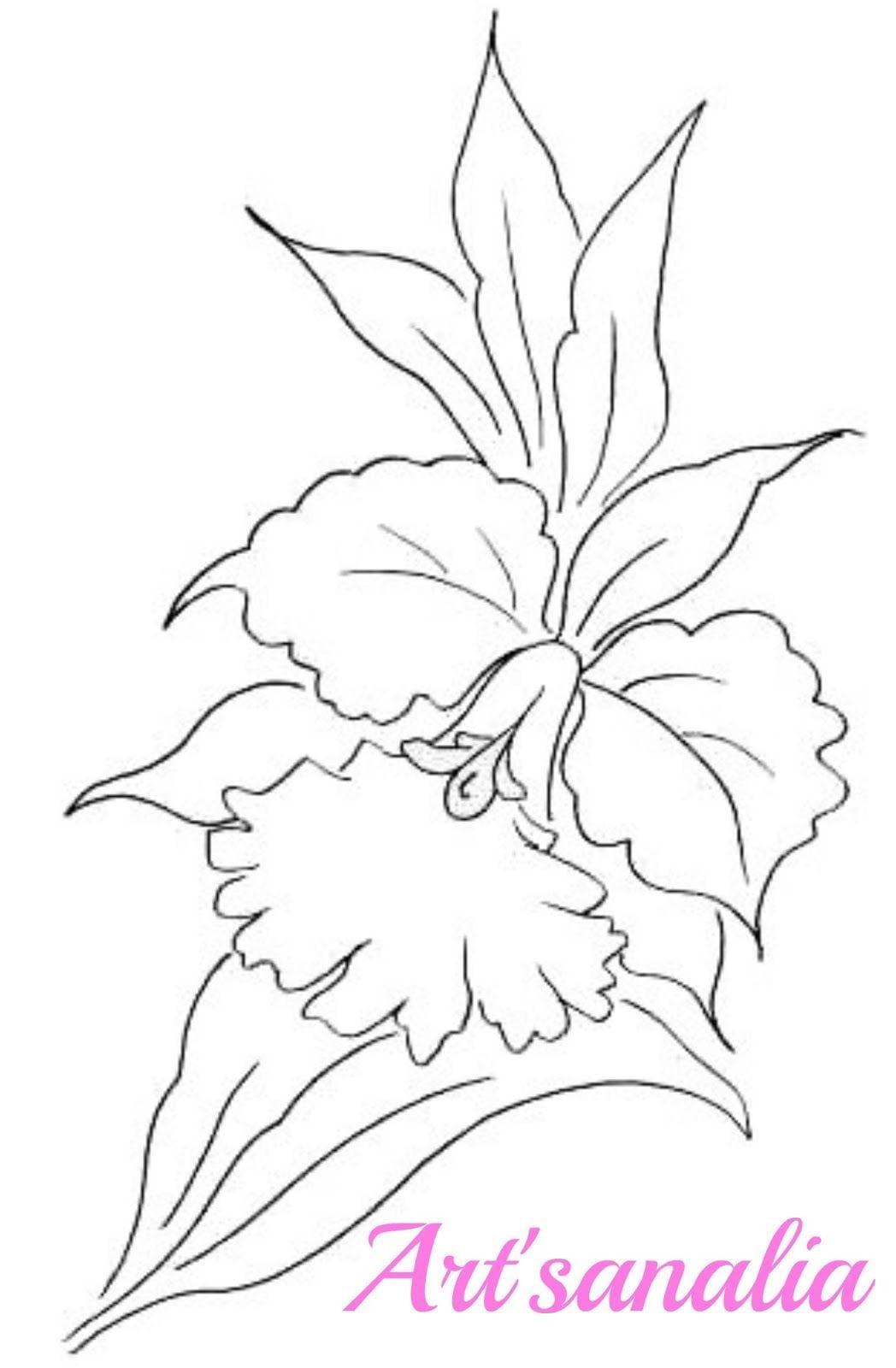 Art'sanália  Riscos Para Pintar Orquídeas! …