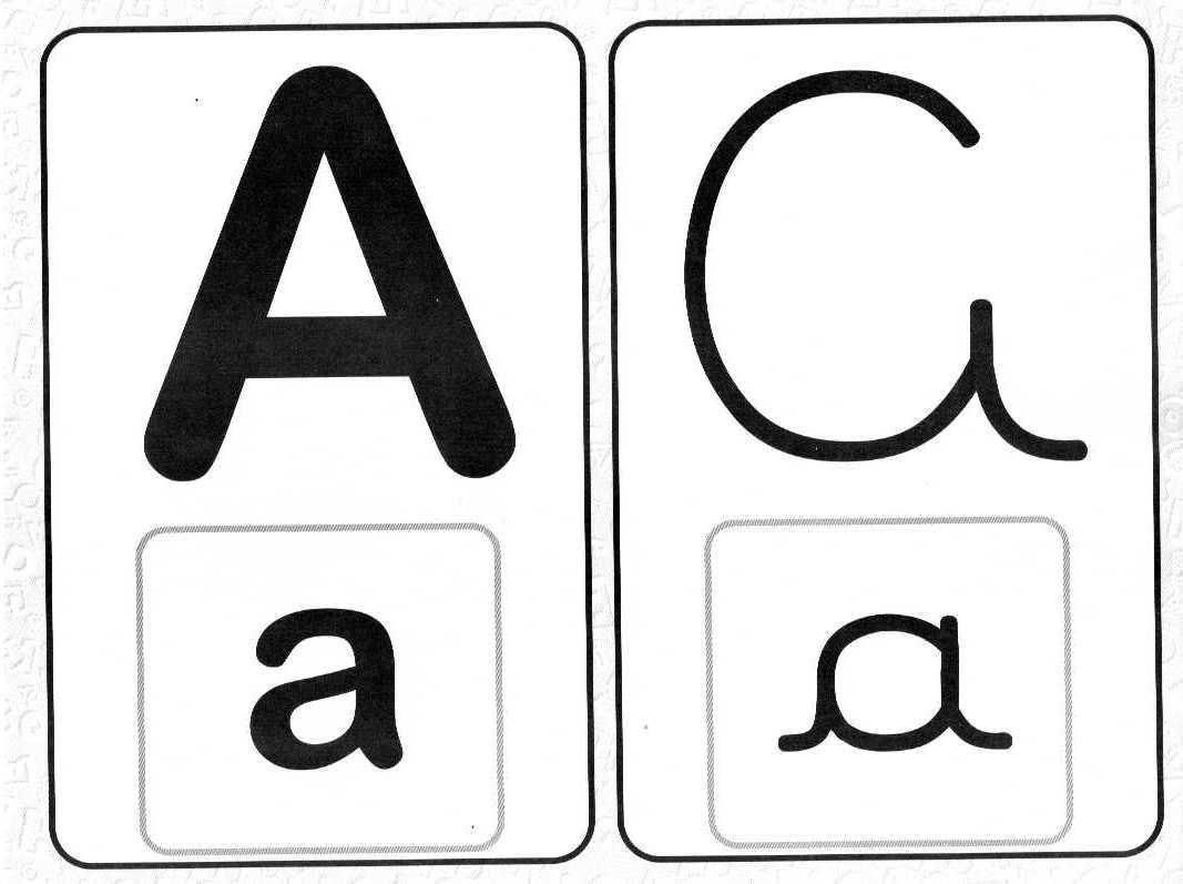 Alfabeto Com Todos Os Tipos De Letras