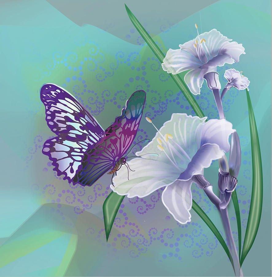 Borboleta Numa Flor    Fotos E Imagens