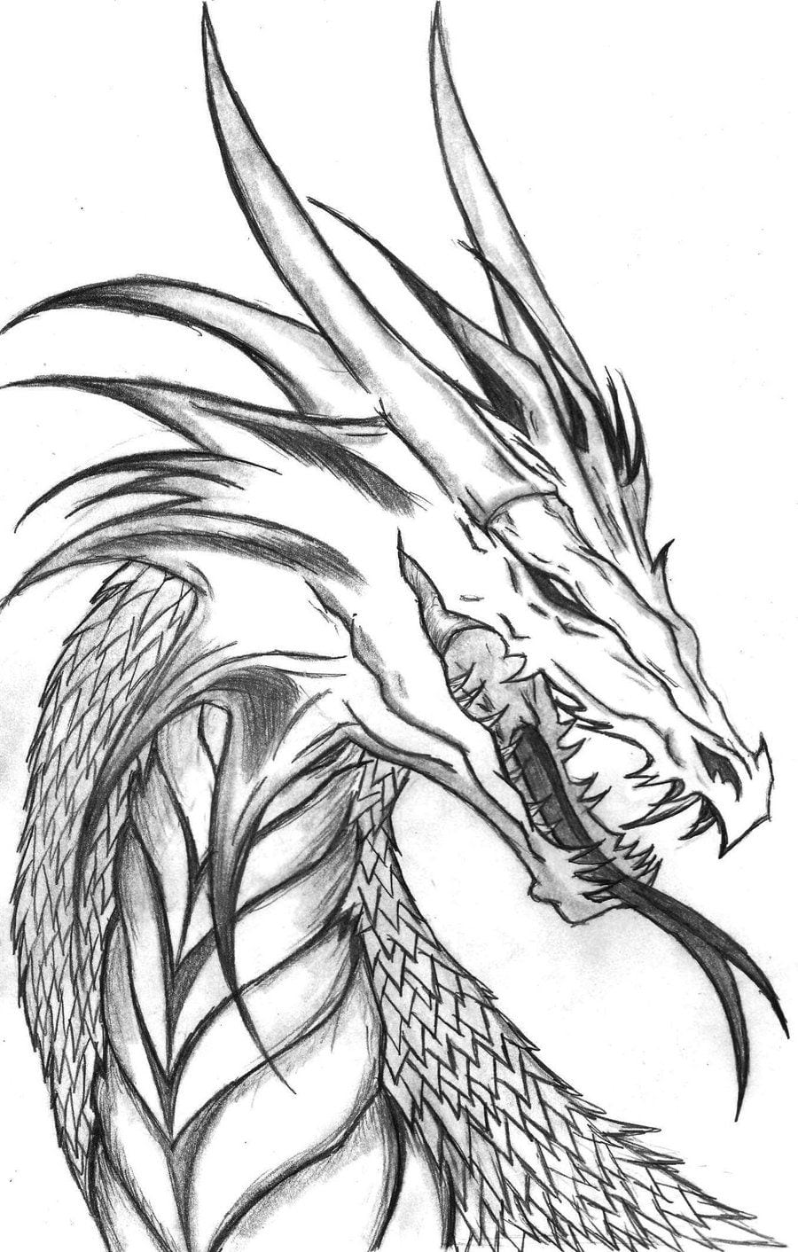 Dragon Head Side Profile By ~the