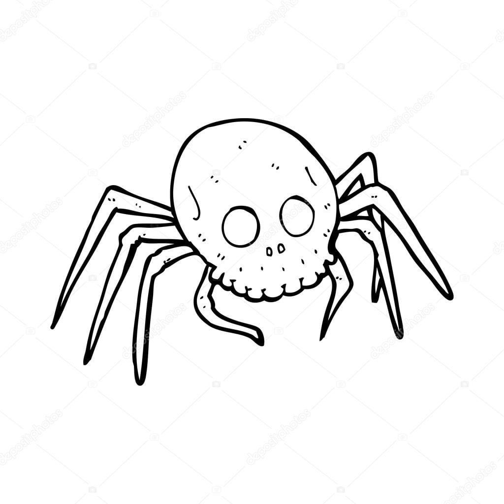 Aranha De Crânio Halloween Assustador Dos Desenhos Animados