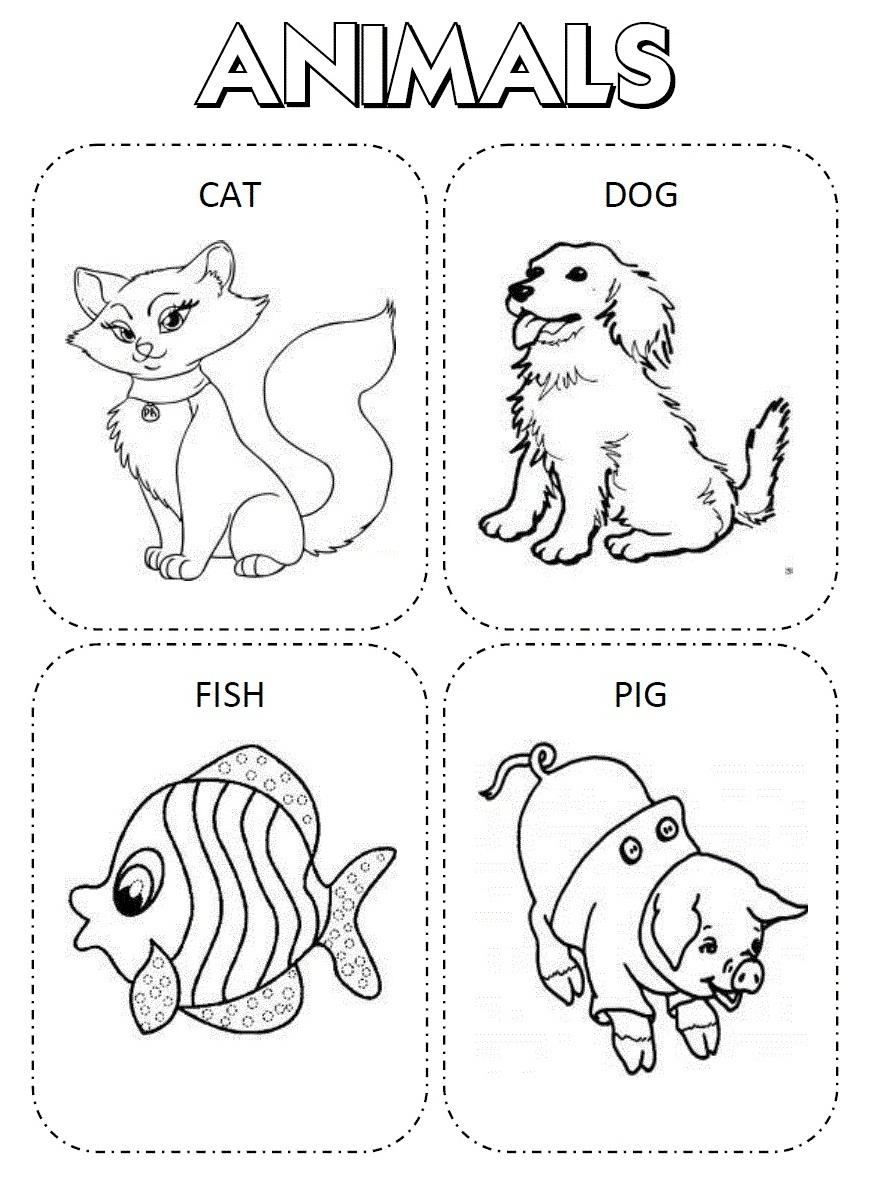 Brinquedos De Papel  Desenhos De Animais Em Ingles Pra Colorir