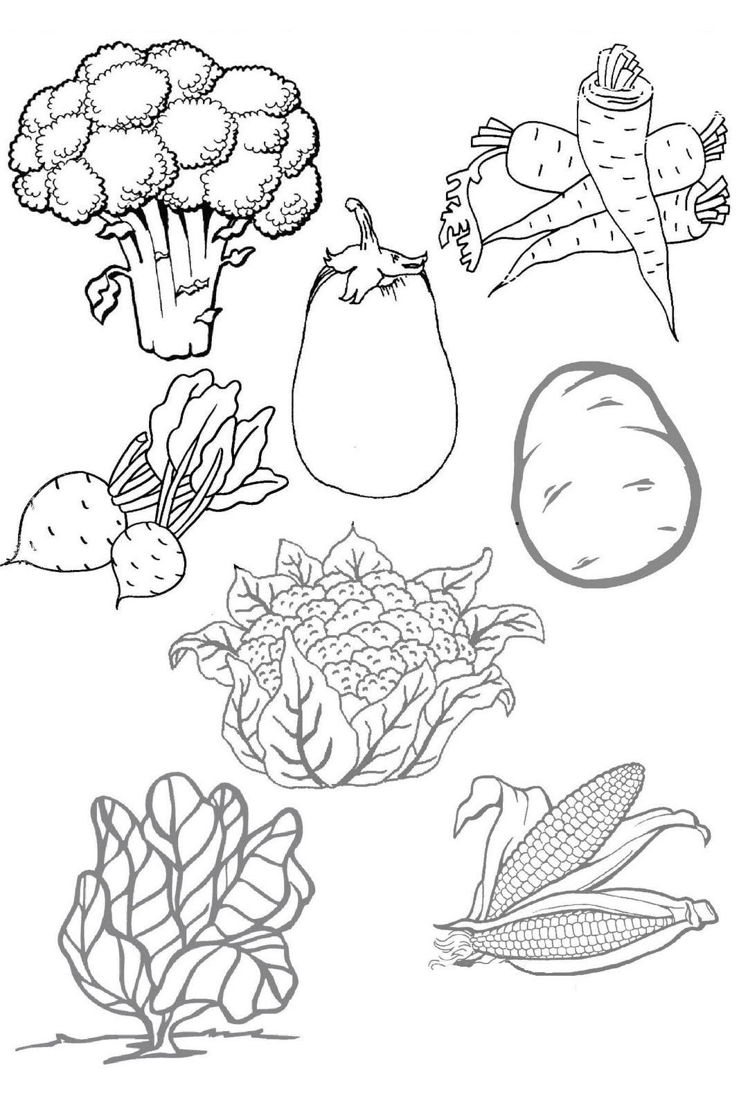 Legumes Para Colorir – Pampekids Net