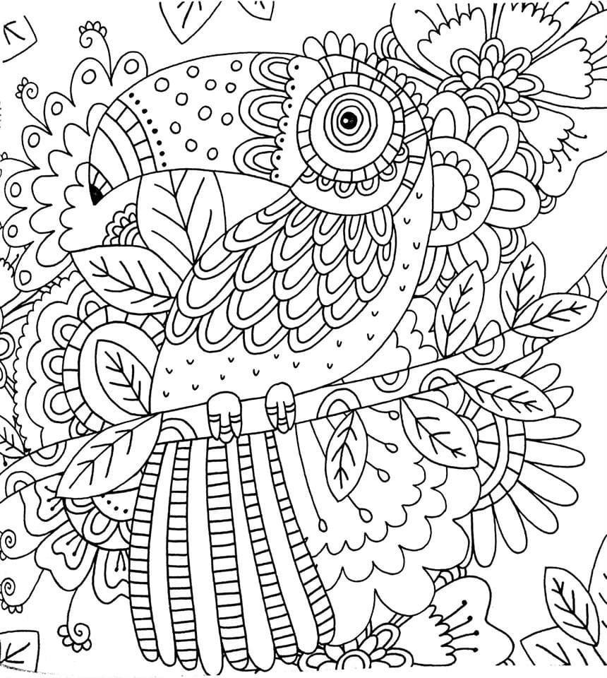 Livro De Colorir Floresta Magica Adult Coloring Pages Colori On