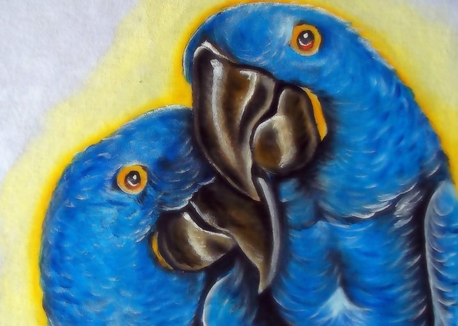 Como Pintar Pássaros