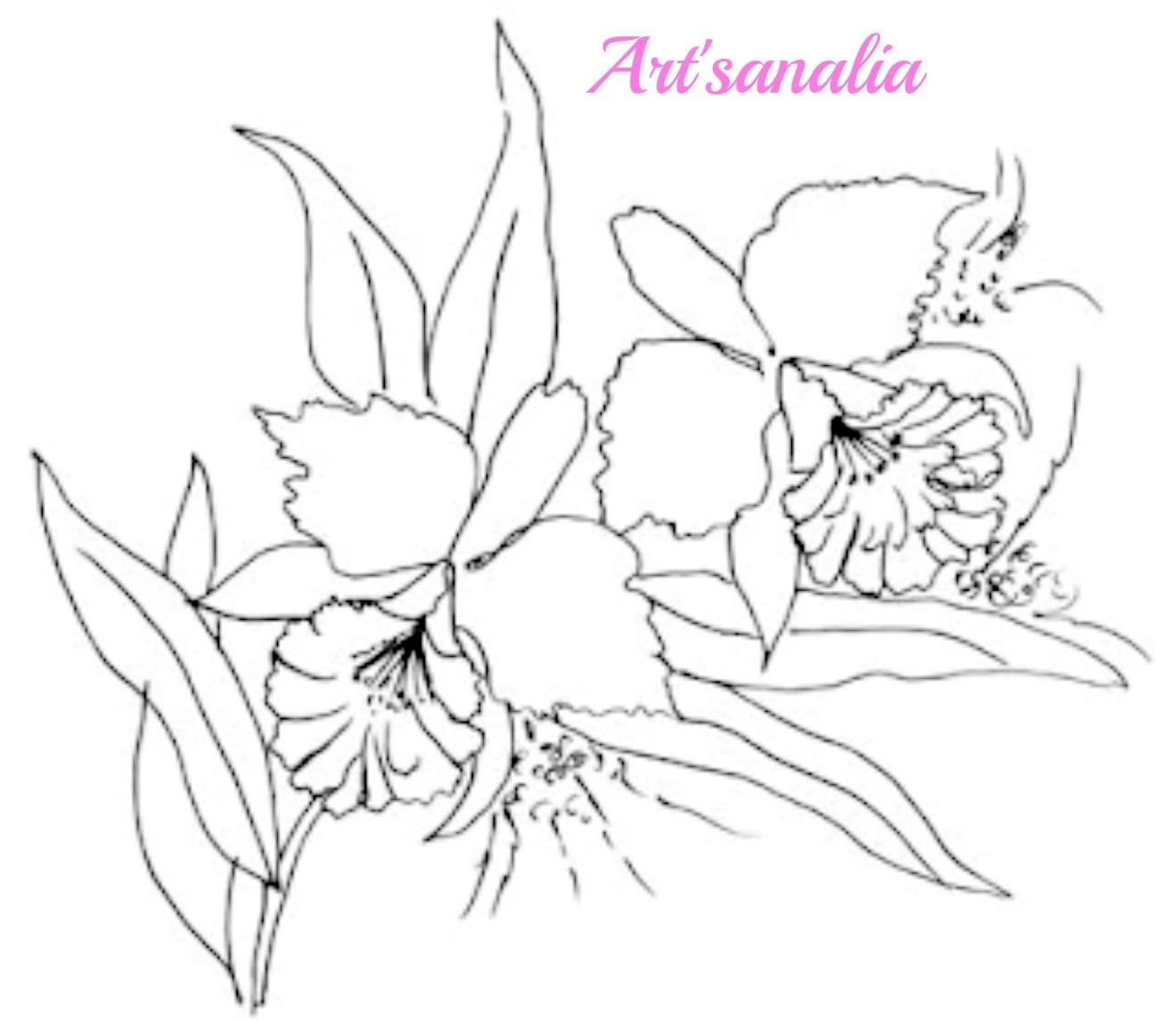 Art'sanália   Riscos Para Pintar Orquídeas!