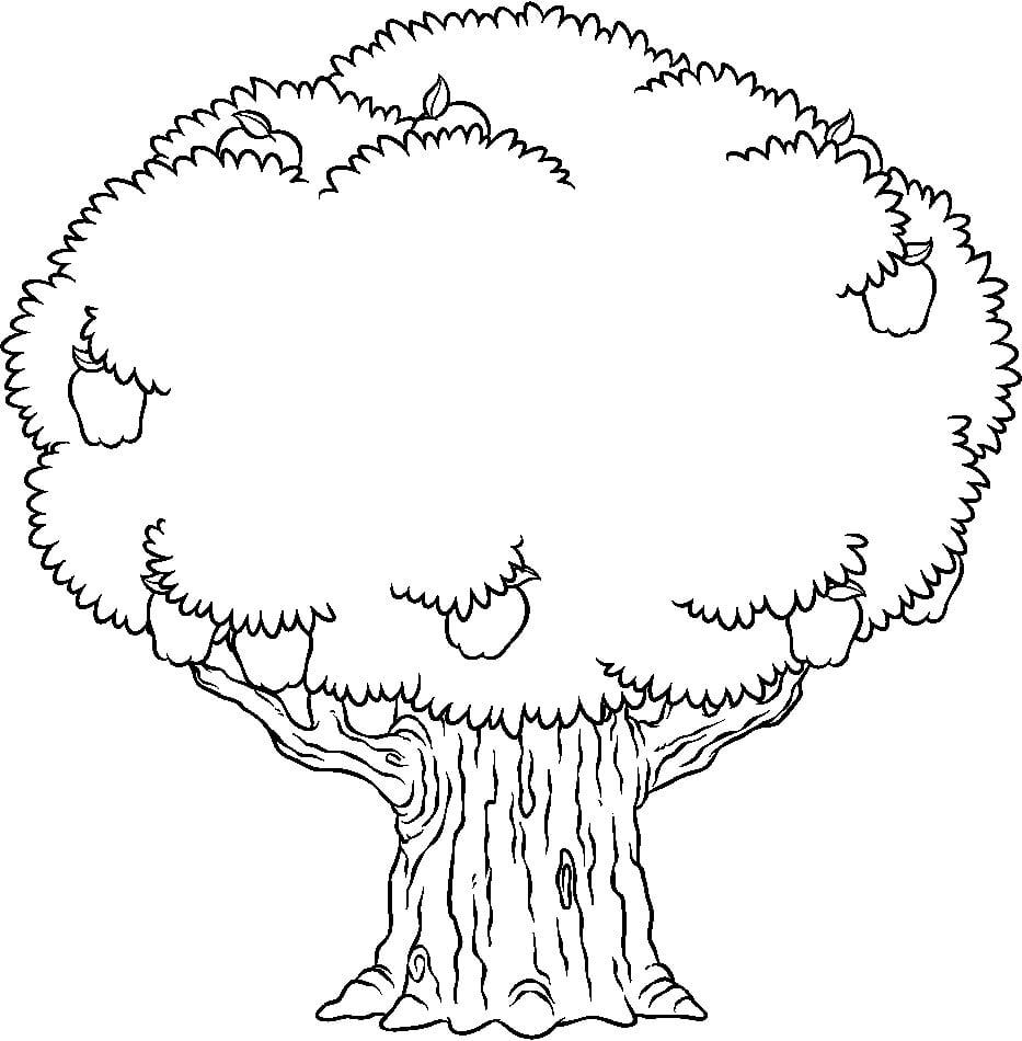 Desenhos Para Colorir De Árvore  Imagens Para Imprimir E Pintar Grátis
