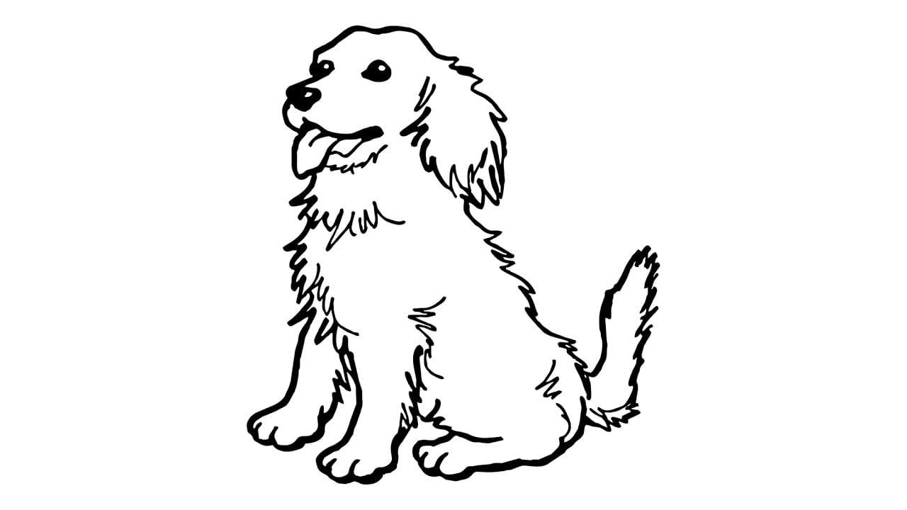 Como Desenhar Um Cachorro (golden, Animais)