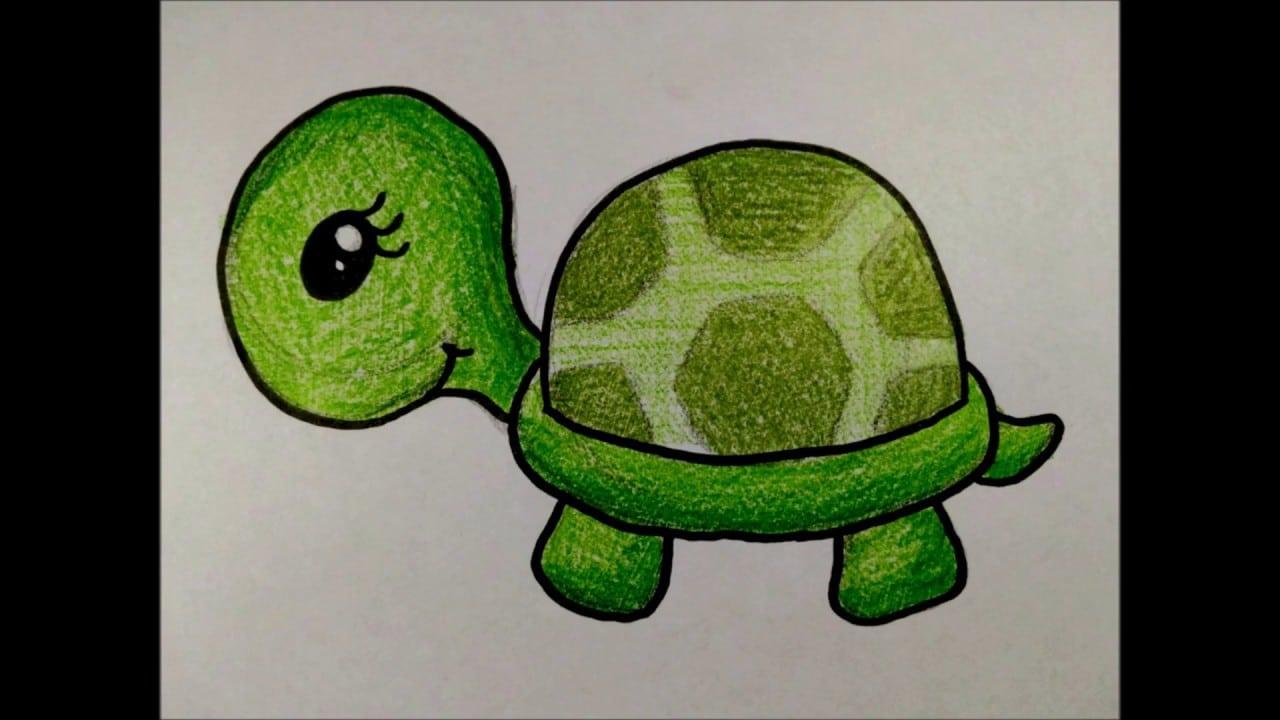 Como Desenhar Uma Tartaruga Fofa Desenhos Faceis Simples