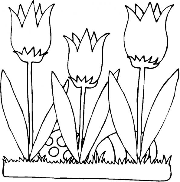 Flor Para Colorir – Pampekids Net