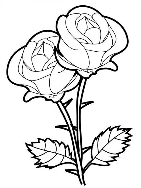 Desenhos De Rosas Para Imprimir E Colorir