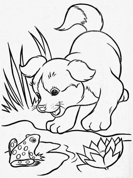 Tarefas Blog Animais Da Fazenda Desenhos Para Colorir – Matring Org