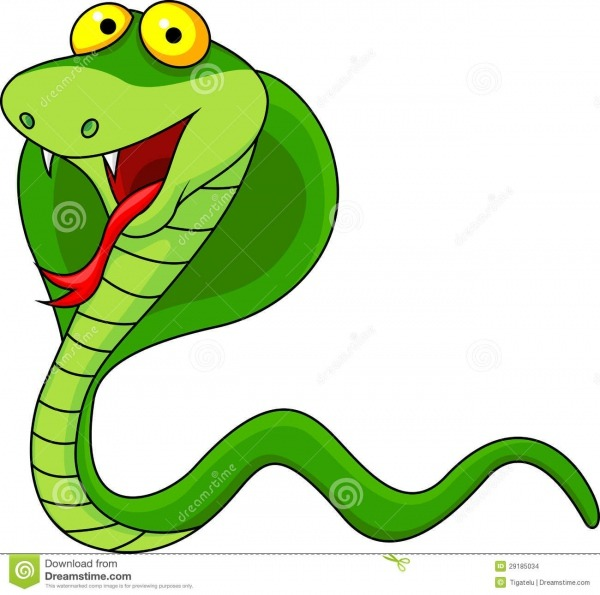 Cobra Cartoon Stock Vector  Illustration Of Animal, Face