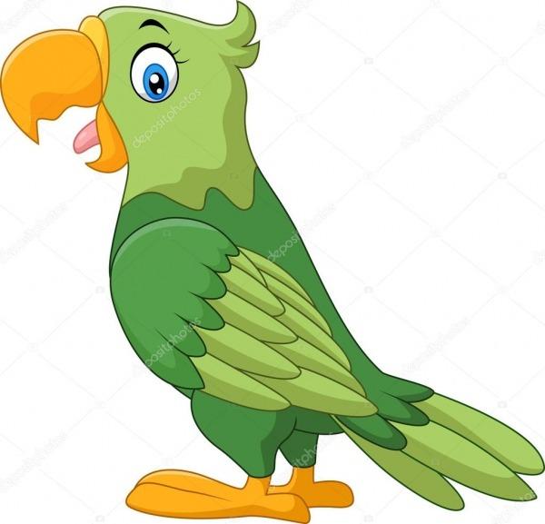 Desenho De Papagaio Feliz — Vetor De Stock © Dreamcreation01