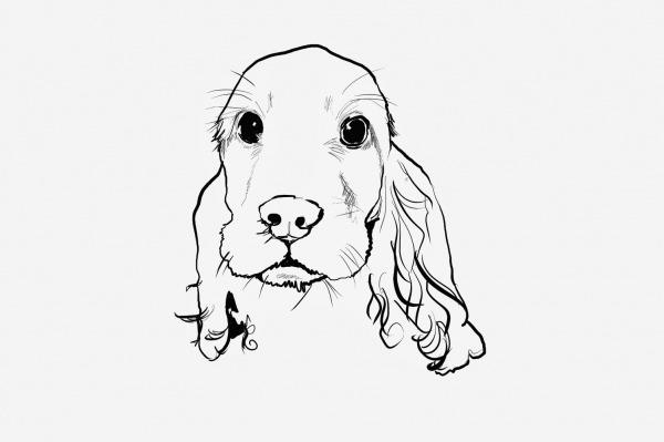 Desenhando Cachorro ~ Draw Project
