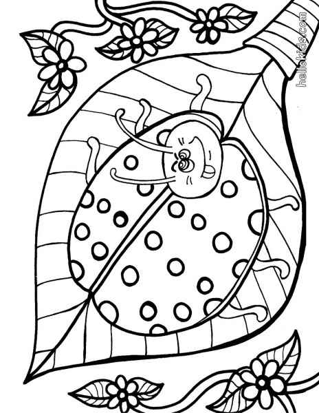 Desenhos Para Colorir De Joaninha Para Pintar