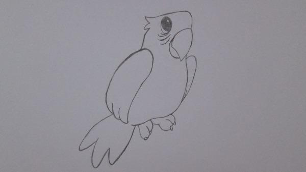 Como Desenhar Um Papagaio