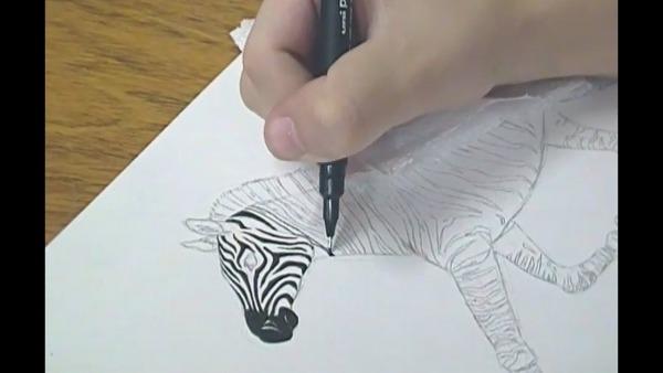 Desenho Do Dia  2