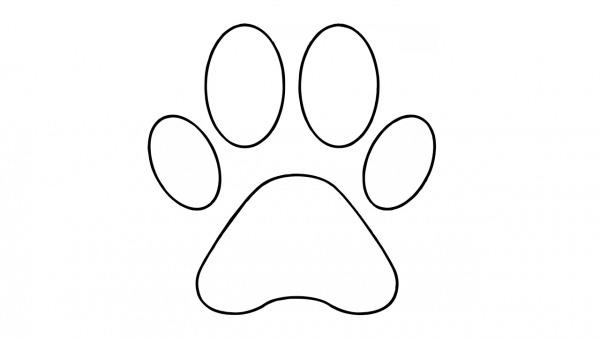 Como Desenhar Uma Pata De Cachorro (fácil)
