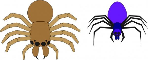 Como Desenhar Uma Aranha09