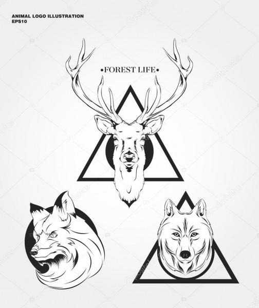 Logotipos De Animais Selvagens De Hipster — Vetor De Stock