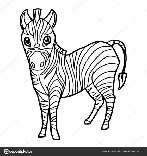 Cartoon Cute Zebra Coloring Page Vector  — Stock Vector