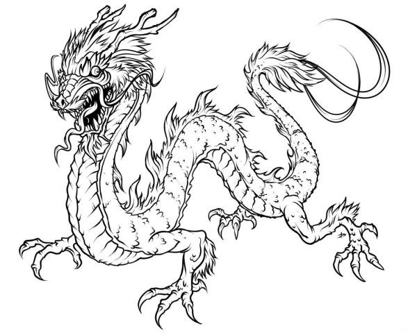 Dragão Chinês    Fotos E Imagens