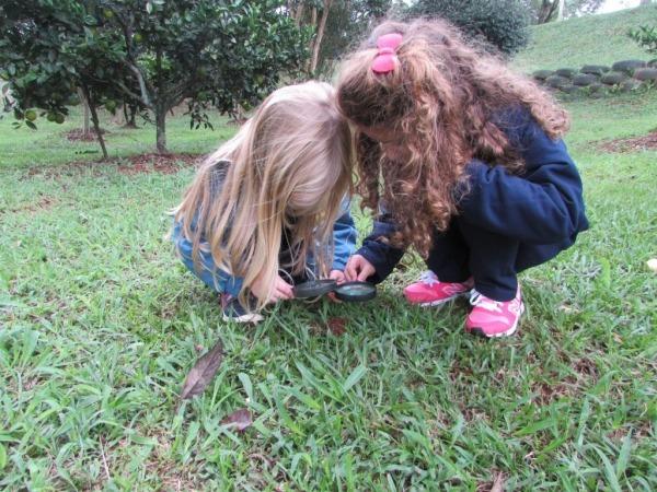 Crianças Do Infantil 4 Aprendem Sobre Os Animais Vertebrados E