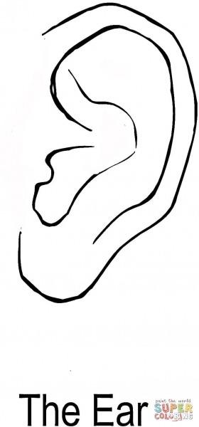 Desenho De A Orelha Para Colorir