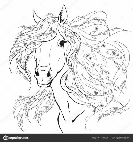 Retrato De Cavalo  Cabeça De Cavalo Com Flores  Linhas Pretas