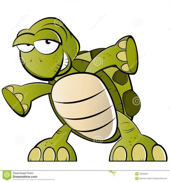 Tartaruga Dos Desenhos Animados Ilustração Do Vetor