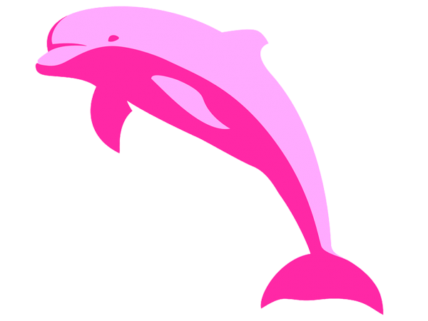 Resultado De Imagem Para Desenho Boto Rosa