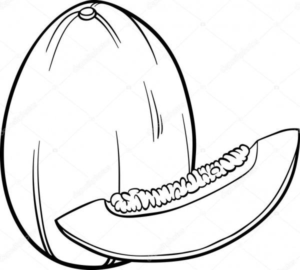 Ilustração De Fruta Melão Para Colorir Livro — Vetor De Stock