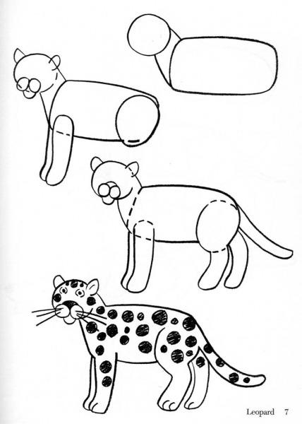 Aprenda A Desenhar  Aprenda A Desenhar Animais
