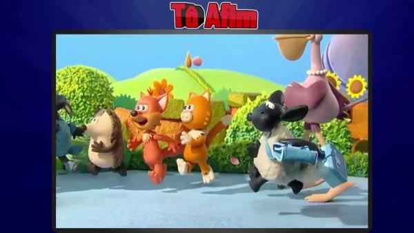 Timmy E Seus Amigos
