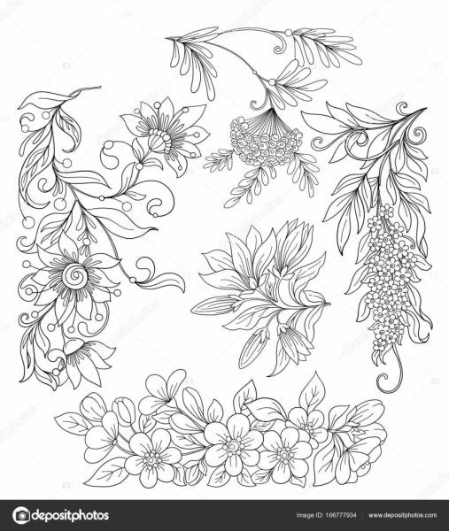 Conjunto De Flores Da Primavera  Ilustração Em Vetor Linha Estoque
