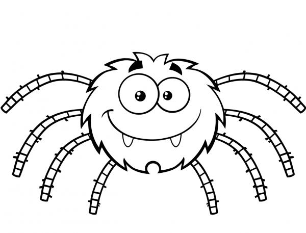 Desenhos De Aranhas Para Imprimir E Colorir