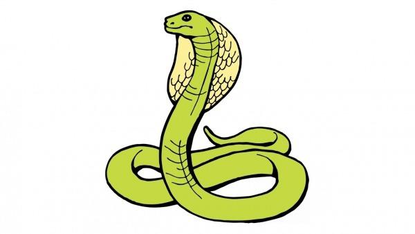 How To Draw A Snake (cobra, Naja, Animals)