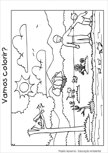 Desenhos Do Meio Ambiente Para Colorir