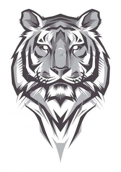 Tigre Preto Branco E Cinza