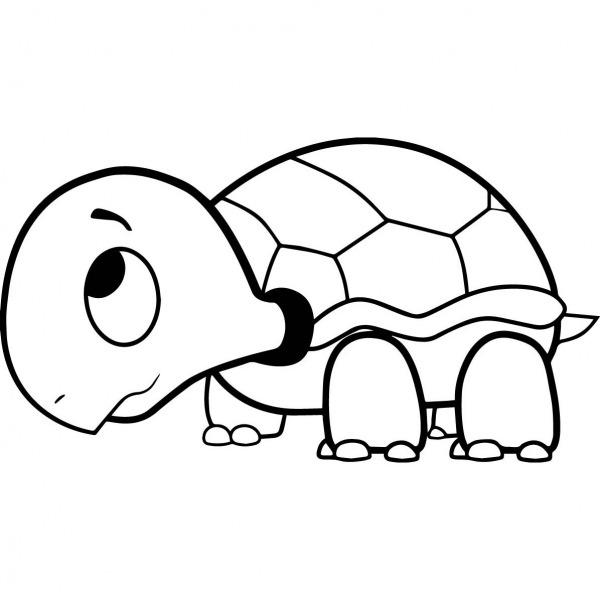 Desenho Para Colorir De Tartaruga – Pampekids Net