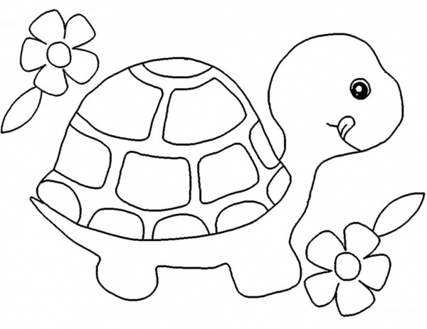Desenhos De Tartarugas Para Imprimir E Colorir
