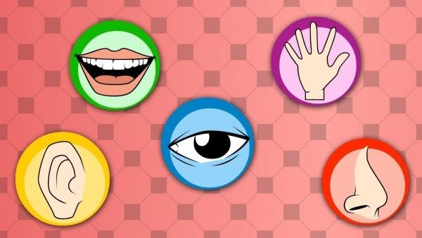 Os Cinco Amigos