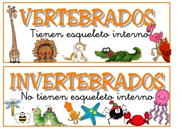 Animales Vertebrados E Invertebrados Para Colorear E Imprimir
