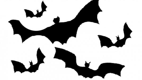 Pinte Morcegos Neste Halloween