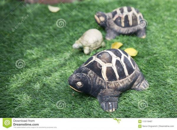 Três Figuras Das Tartarugas No Parque Imagem De Stock