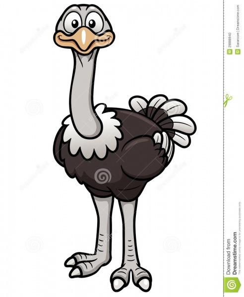 Avestruz Dos Desenhos Animados Ilustração Do Vetor