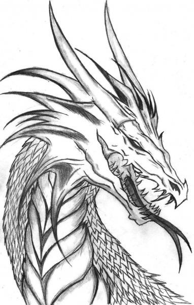 Cool Dragon Plz Draw It